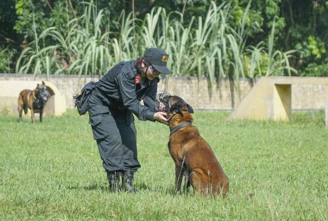 Chiêm ngưỡng khả năng đặc biệt trong trấn áp tội phạm của chó nghiệp vụ - 2