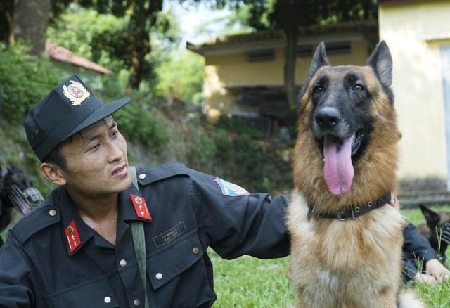 Chiêm ngưỡng khả năng đặc biệt trong trấn áp tội phạm của chó nghiệp vụ - 11