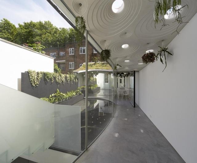 Độc đáo căn biệt thự đổ đất trồng cây xanh trên mái nhà để tránh nóng - 9