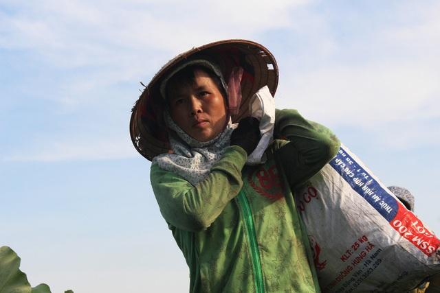 Nông dân thắng lớn, thu cả trăm triệu đồng nhờ trồng sen lấy hạt - 5