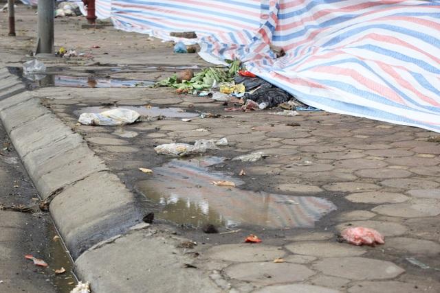 Bãi Nam Sơn bị phong tỏa, rác trong nội đô chất như núi - 8