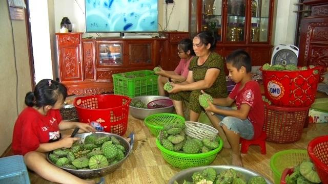 Bỏ cấy lúa sang trồng sen, người dân thu lãi cả trăm triệu đồng - 6