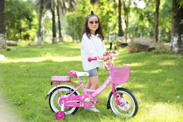 Xe đạp Totem - chặng đường 10 năm trên thị trường Việt Nam - 1