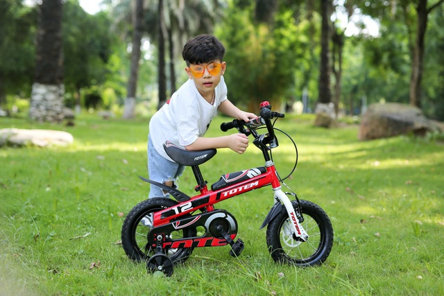 Xe đạp Totem - chặng đường 10 năm trên thị trường Việt Nam - 2