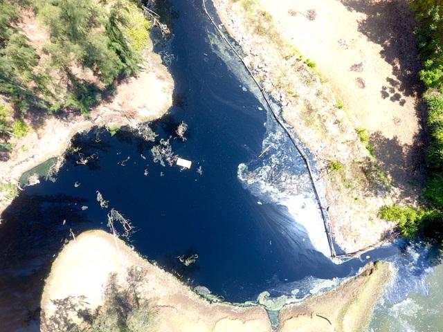 Hình ảnh kinh hoàng hồ nuôi tôm xả nước thải đen ngòm bức tử cả bãi biển - 13