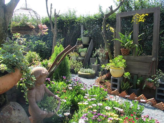 Vợ chồng trẻ rủ nhau bỏ phố về quê, làm vườn đẹp mê chỉ hết 1 triệu đồng - 9