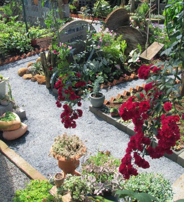Vợ chồng trẻ rủ nhau bỏ phố về quê, làm vườn đẹp mê chỉ hết 1 triệu đồng - 13