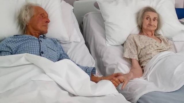 Cảm động bức ảnh cái nắm tay lần cuối trên giường bệnh - 1