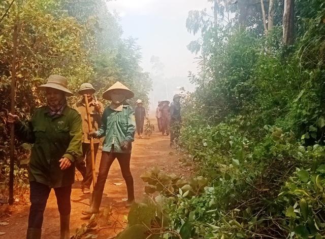 Hơn 300 người căng mình chữa cháy rừng thông - 2