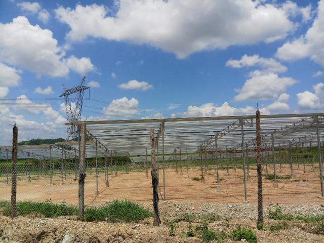 Hàng loạt công trình điện mặt trời được đấu điện trái quy định tại Đắk Nông - 4