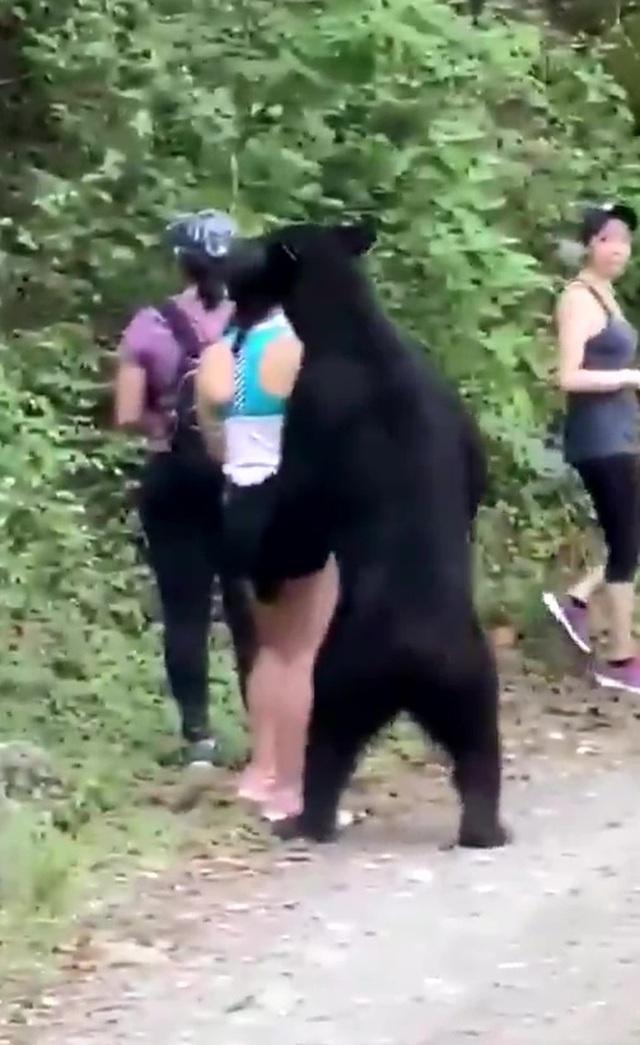 """Thót tim cảnh gấu đen bất ngờ cùng chụp """"tự sướng với du khách - 1"""
