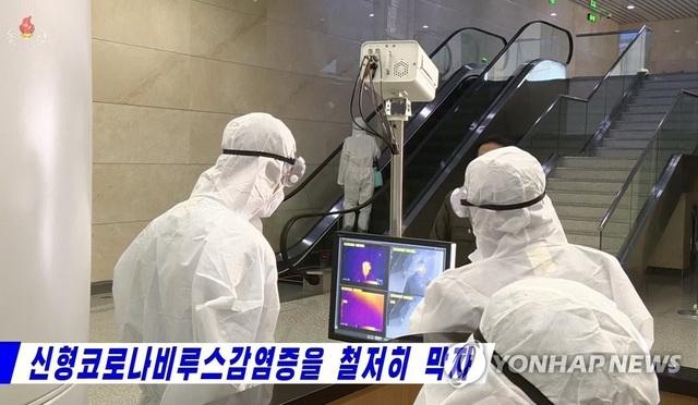 Vì sao Triều Tiên phát triển vắc xin dù sạch bóng Covid-19? - 2