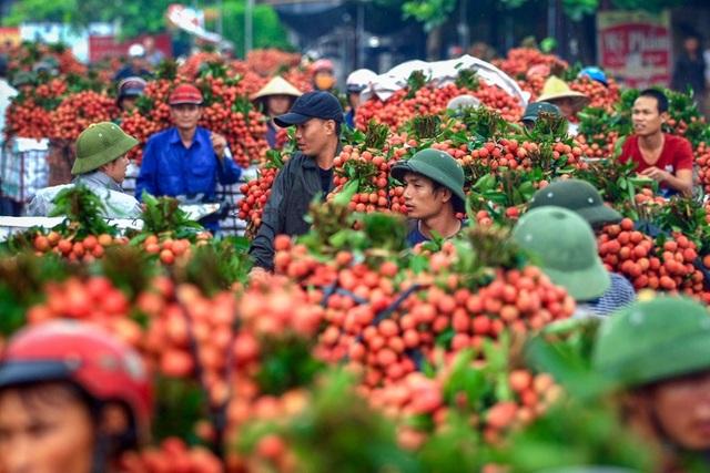 Báo Nhật: Vải thiều Việt Nam gây sốt trên thị trường Nhật Bản - 1