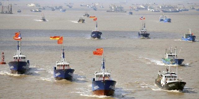 Ecuador báo động hàng trăm tàu cá Trung Quốc xuất hiện gần khu bảo tồn - 1