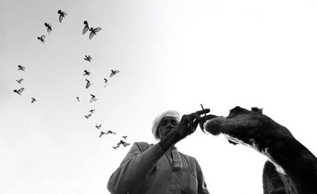 Quán quân cuộc thi ảnh iPhone chia sẻ bí quyết chụp street style cực chất - 1