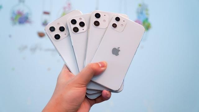 Xuất hiện mô hình 4 chiếc iPhone 12 tại Việt Nam - 2