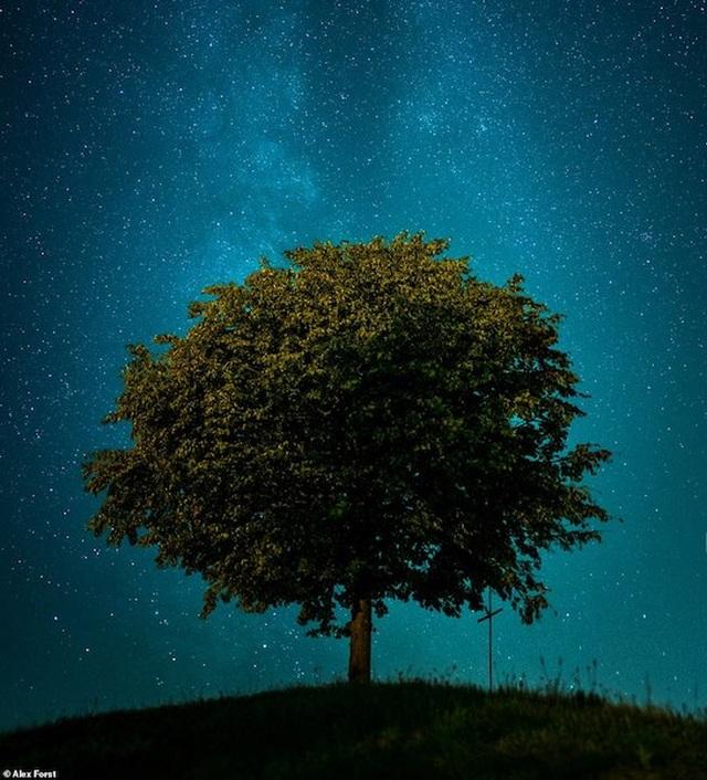 Mê hoặc với bộ ảnh lãng mạn về bầu trời lấp lánh sao đêm ở châu Âu - 7