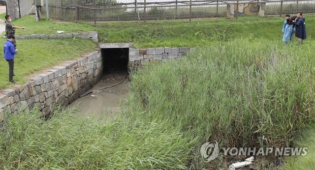 Tướng Hàn Quốc mất chức vì để người đào tẩu Triều Tiên trốn thoát - 1