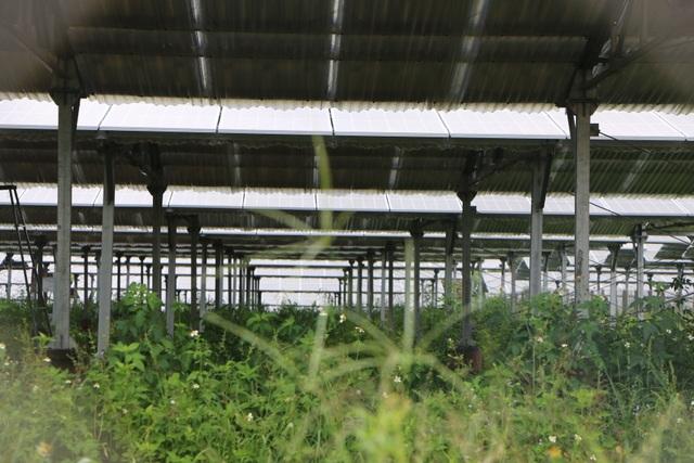 """Điểm mặt những bất thường tại """"xưởng"""" điện mặt trời mái nhà tại Đắk Nông - 10"""