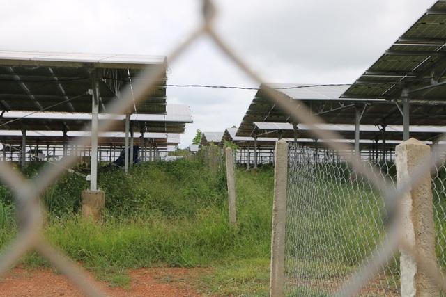 """Điểm mặt những bất thường tại """"xưởng"""" điện mặt trời mái nhà tại Đắk Nông - 8"""