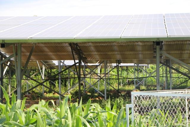 """Điểm mặt những bất thường tại """"xưởng"""" điện mặt trời mái nhà tại Đắk Nông - 3"""