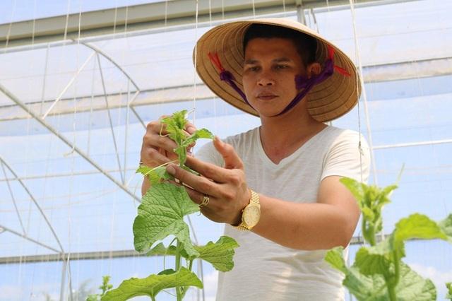 Hà Tĩnh: Thanh niên 8X bỏ túi nửa tỷ đồng một năm từ nghề trồng dưa - 1