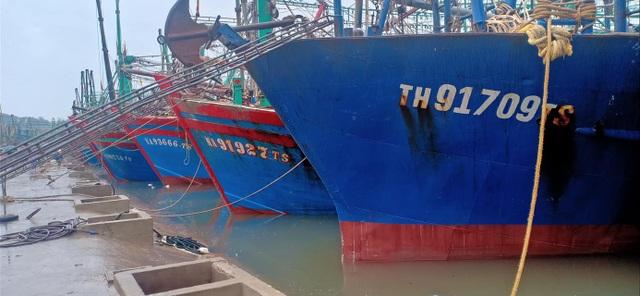 Nghệ An, Thanh Hóa di dời dân trước bão, phòng chống dịch tại nơi sơ tán - 7