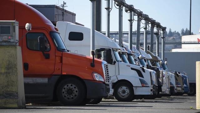Cảng cạn Long Biên hoạt động đúng ngày EVFTA chính thức có hiệu lực - 4