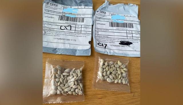 Nhiều nước phát hiện hạt giống bí ẩn từ Trung Quốc - 1