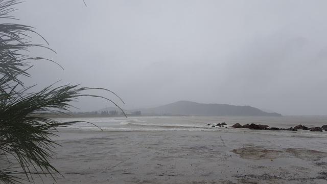 Tàu cá bị chìm do ảnh hưởng bão số 2 - 11