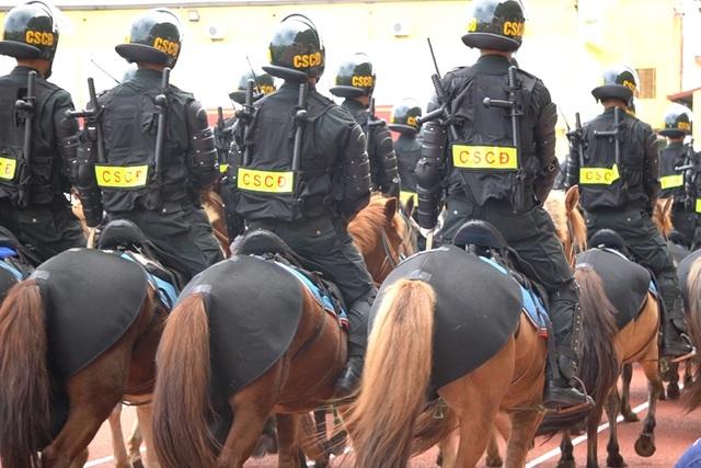 Diện mạo mới lạ của Đoàn cảnh sát cơ động kỵ binh  - 8