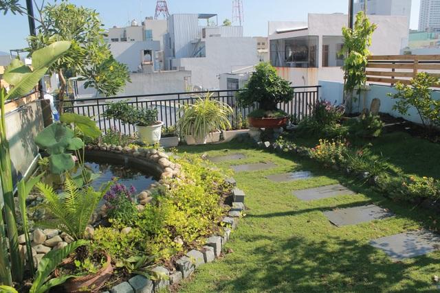 """Ông bố 2 con ở Đà Nẵng """"làm vườn, nuôi cá"""" đẹp mê trên sân thượng nhà phố - 6"""