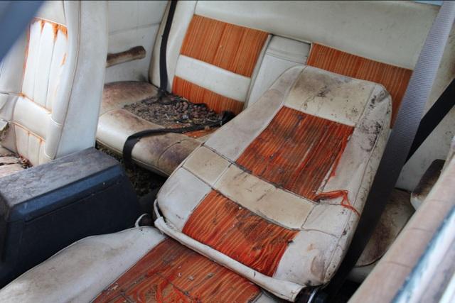 Xe đồng nát bị bỏ hoang 32 năm bỗng bán được giá kỷ lục - 10