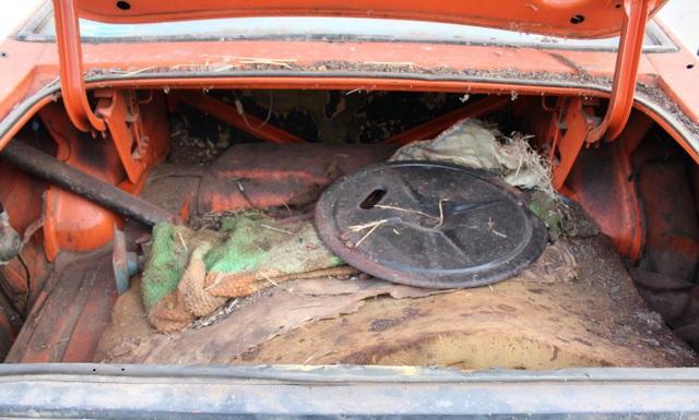 Xe đồng nát bị bỏ hoang 32 năm bỗng bán được giá kỷ lục - 13