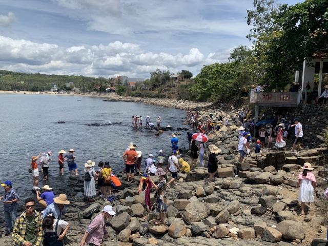 TP Hồ Chí Minh có trên 35.000 tour du lịch bị hủy vì dịch bệnh COVID-19 - 1