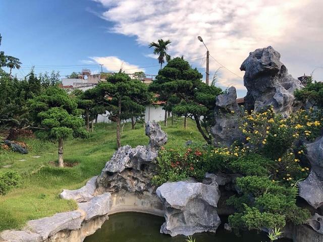 Vườn tùng bạc tỷ rộng 1500m2 trong khuôn viên biệt thự ở Buôn Mê Thuột - 2