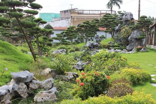 Vườn tùng bạc tỷ rộng 1500m2 trong khuôn viên biệt thự ở Buôn Mê Thuột - 8