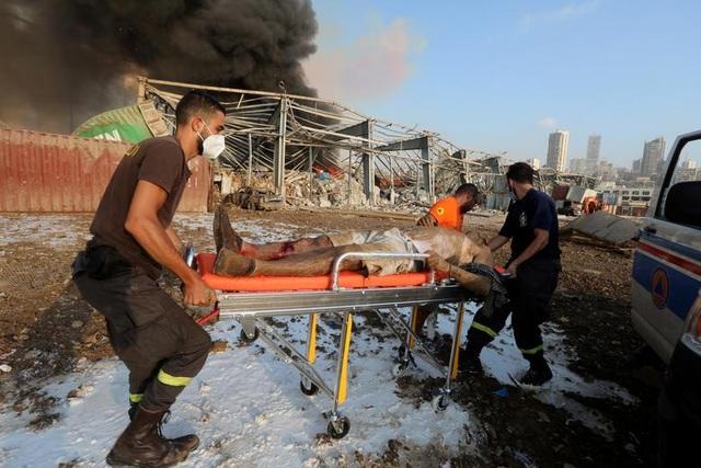 Thảm kịch Beirut: 250.000 người mất nhà cửa, bệnh viện quá tải nạn nhân - 1
