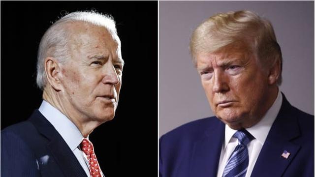 Nhà sử học Mỹ dự đoán Biden thắng bầu cử Tổng thống năm 2020 - 1