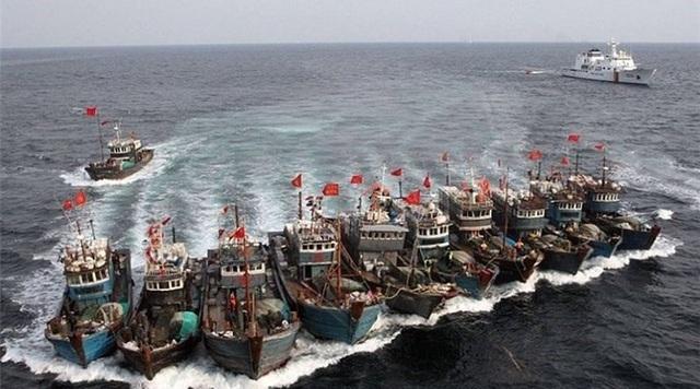 Đội tàu cá Trung Quốc bị tố phá hoại môi trường ở khu bảo tồn Ecuador - 1