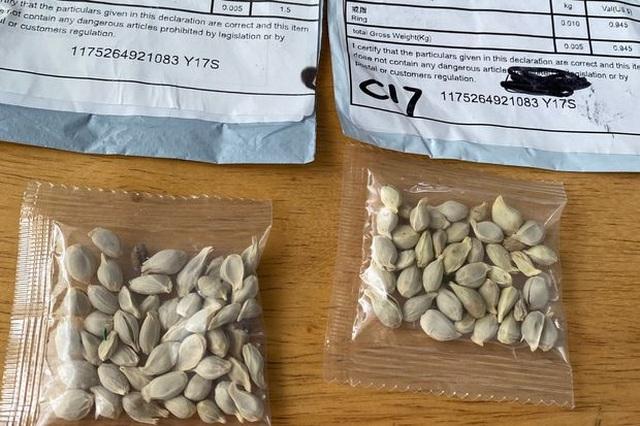 Ba Lan cảnh báo mối đe dọa từ các hạt giống lạ nghi từ Trung Quốc - 1