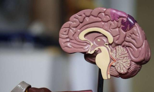 Sử dụng sóng siêu âm để chẩn đoán ung thư não - 1