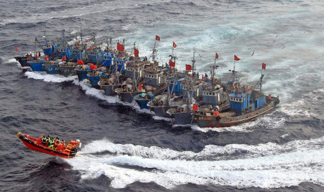 Đội tàu cá của Trung Quốc bị tố vét sạch vùng biển xa bờ - 2