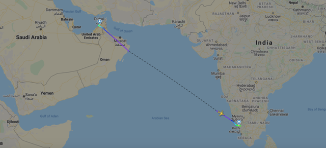 Máy bay chở 190 người vỡ đôi ở Ấn Độ: 18 người chết khi về nước tránh dịch - 4