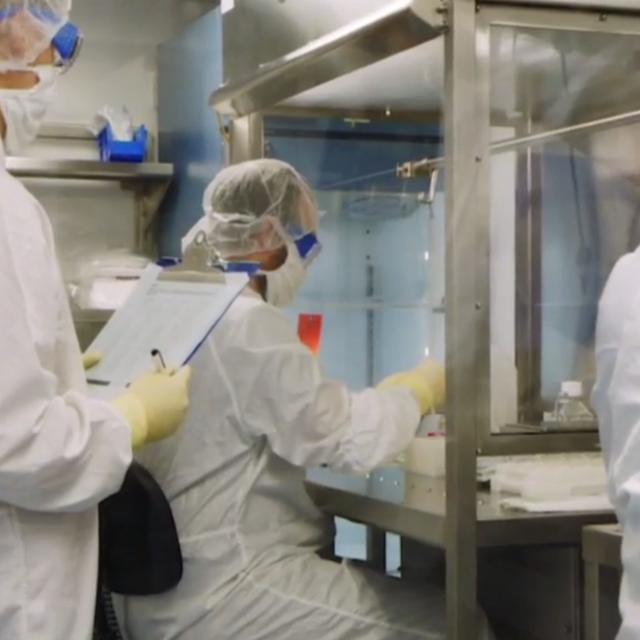 Cuộc đua phát triển kháng thể đơn dòng điều trị Covid-19 - 1