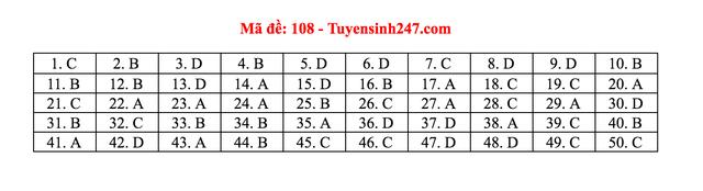 Gợi ý giải đề thi môn Toán tốt nghiệp THPT 2020 - 8