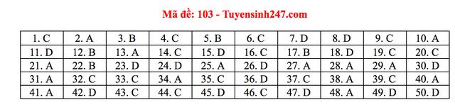 Gợi ý giải đề thi môn Toán tốt nghiệp THPT 2020 - 18