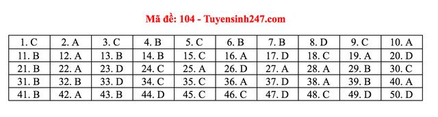 Gợi ý giải đề thi môn Toán tốt nghiệp THPT 2020 - 10