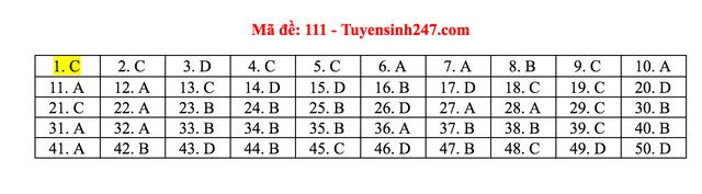 Gợi ý giải đề thi môn Toán tốt nghiệp THPT 2020 - 14