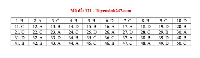 Gợi ý giải đề thi môn Toán tốt nghiệp THPT 2020 - 16